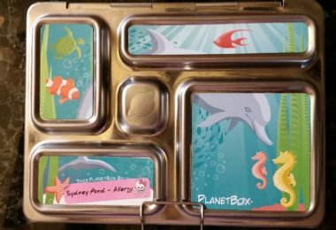 Emily Press Lunch Box